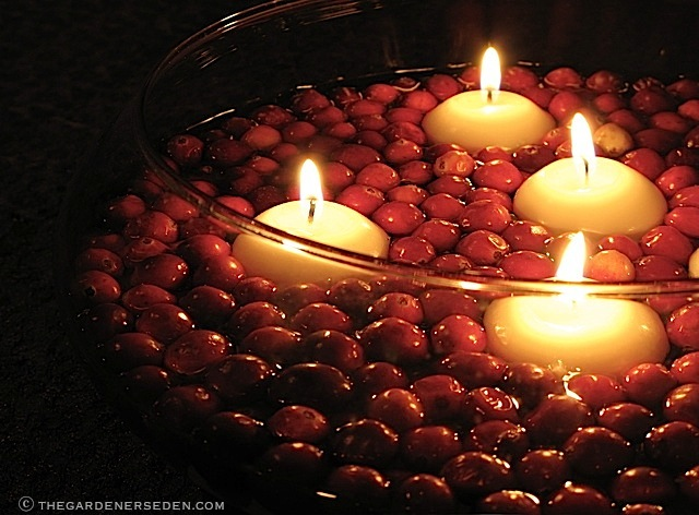 Floating Cranberries and Candles in a Low Bowl