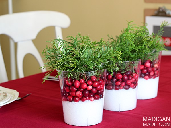 Simple Holiday Centerpiece with Cranberries