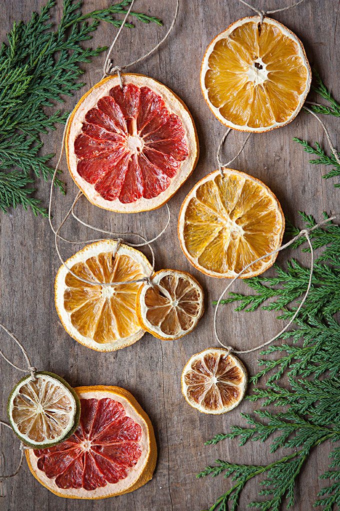Citrus Wheel Ornaments