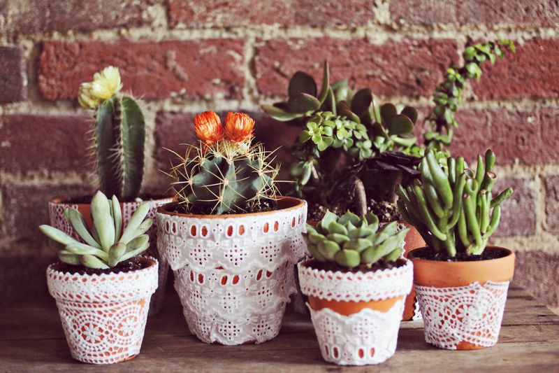 Cover Pots with Lace