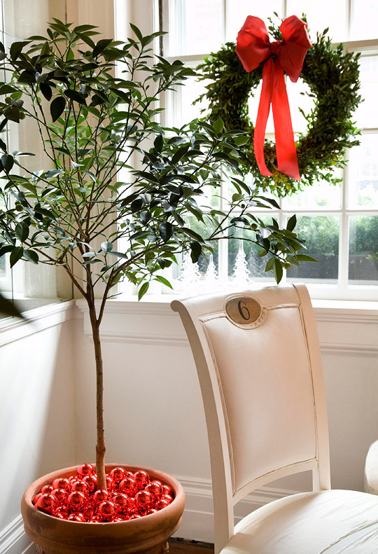 Fill the Vase of a House Plant with Bright Bulb Ornaments
