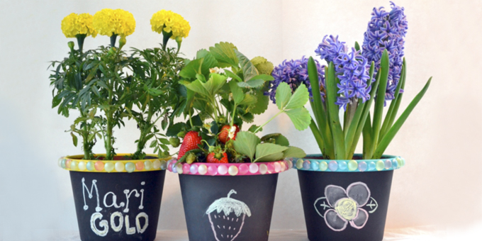 Make Your Own Chalkboard Flowerpots