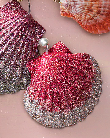 Natural Shell Ornaments with Pearl