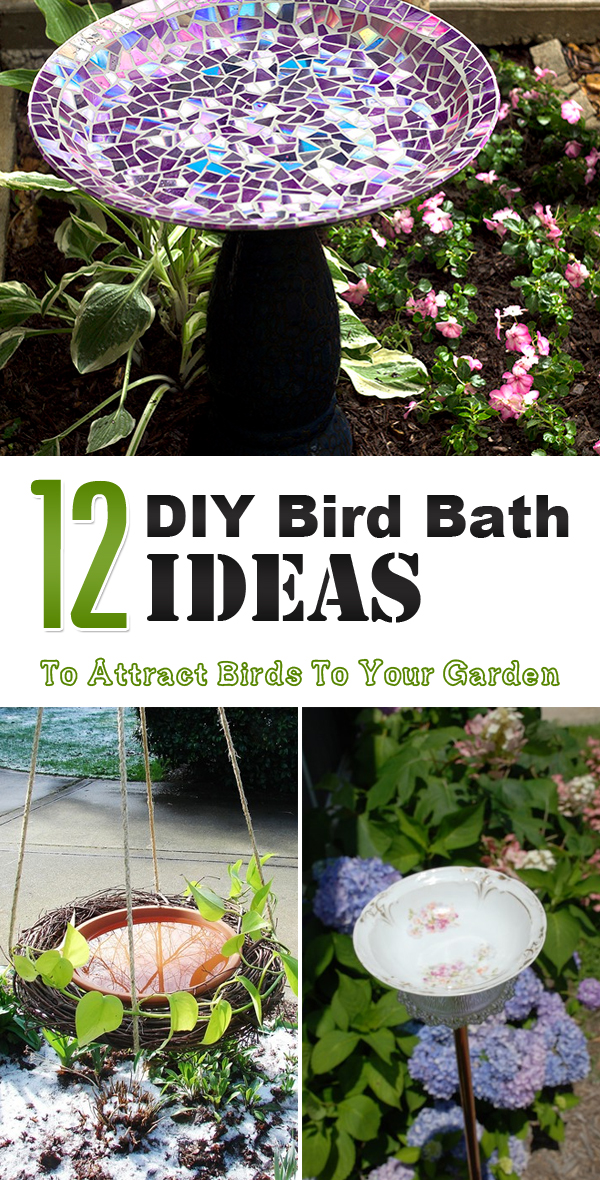 12 Diy Bird Bath Ideas To Attract Birds To Your Garden