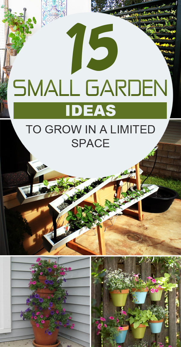 15 Small Garden Ideas to Grow in a limited Space #gardening