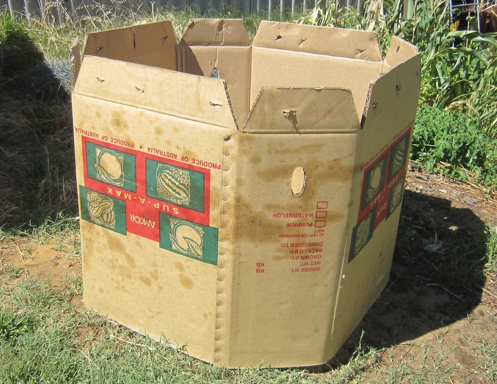 A cardboard bulk box makes for a perfect compost bin
