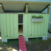 Build a pallet chicken coop for your flock