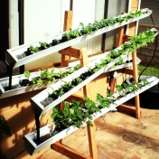 Build a self-watering aquaponic rain gutter garden