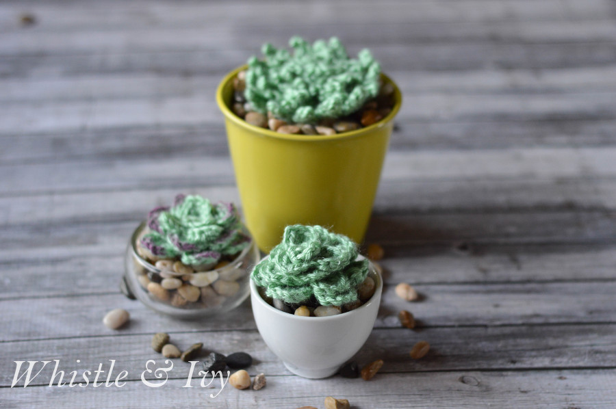 Crochet these adorable succulents