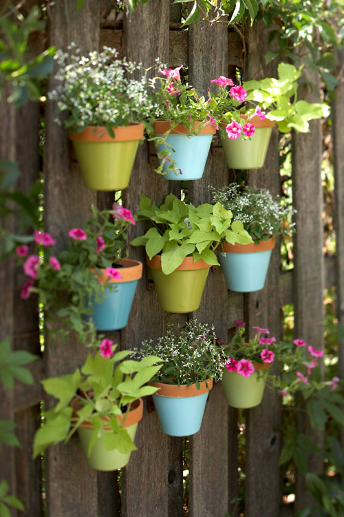 Make a vertical garden with tiny planters mounted on a fence