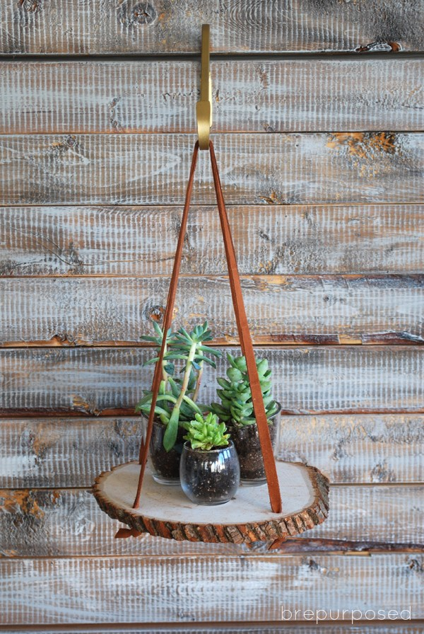 Make this super fun hanging wood slice plant stand