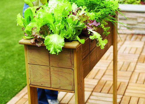 Small-space planter box