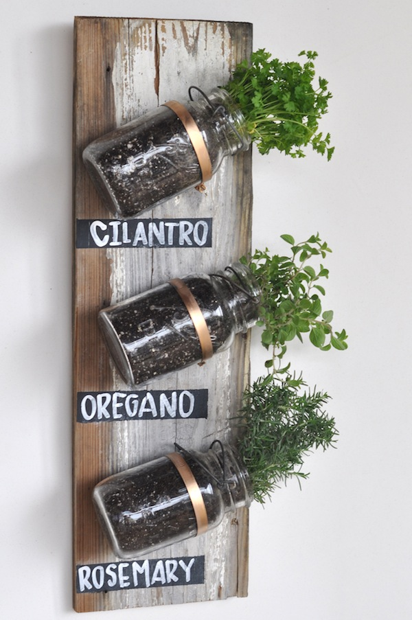 make your own indoor herb garden out of mason jars