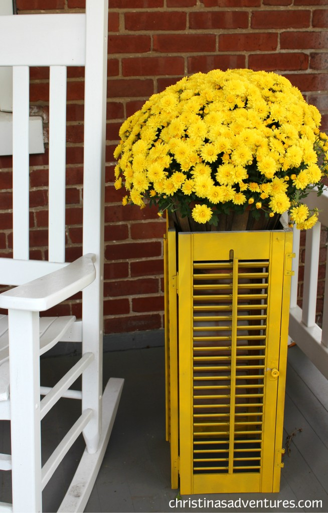 transform a shutter into a stylish DIY planter