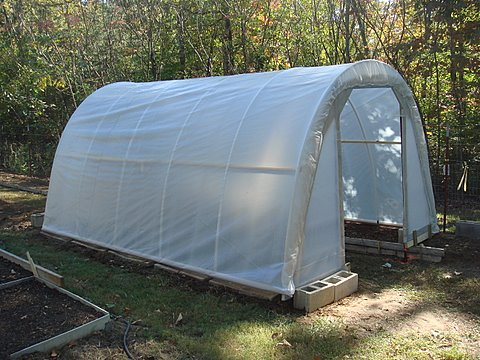 Hoop Greenhouse for Under $50