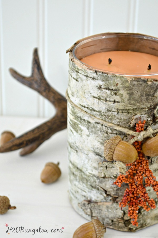 Birch Bark Candle Holder