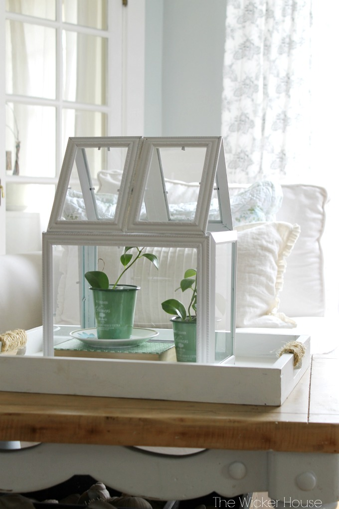 Picture Frame Greenhouse Terrarium