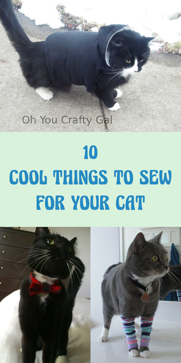 10 Cool Things to Sew for Your Cat