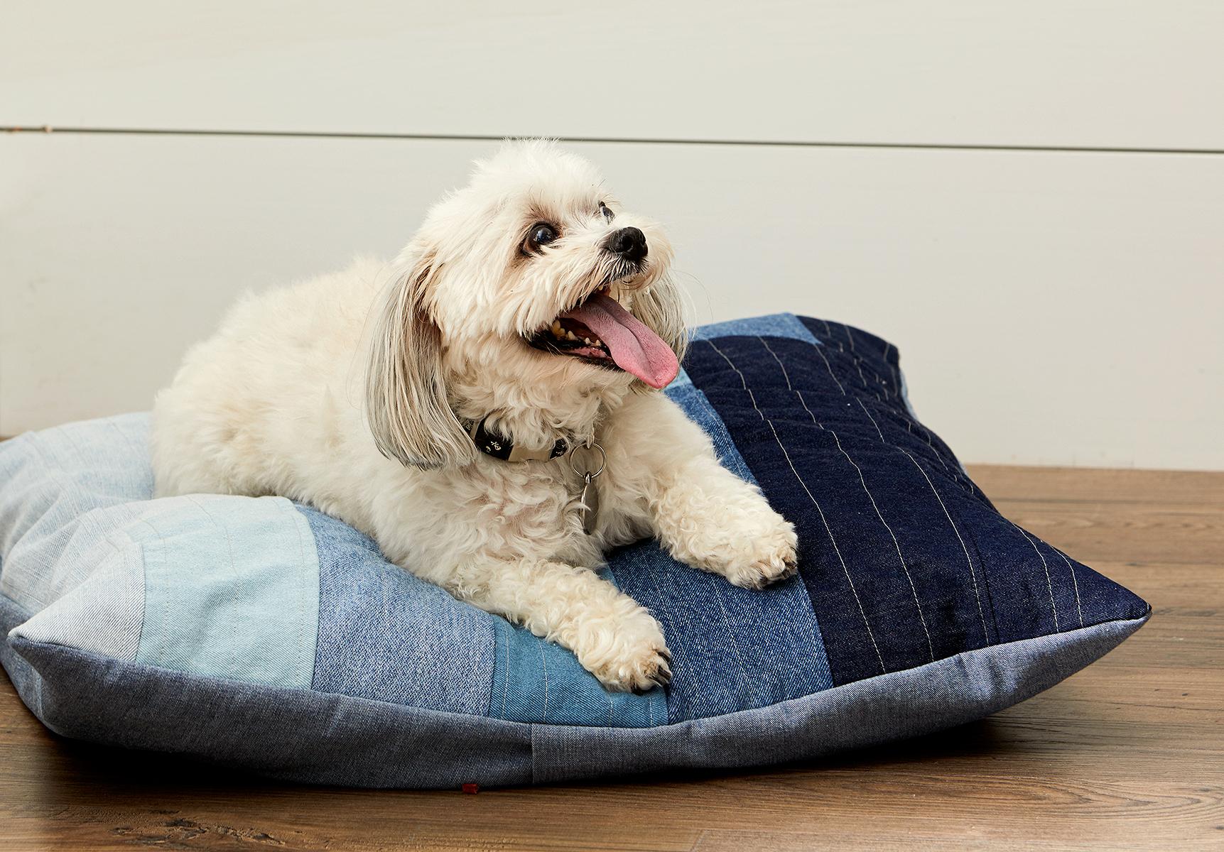 Denim Dog Bed