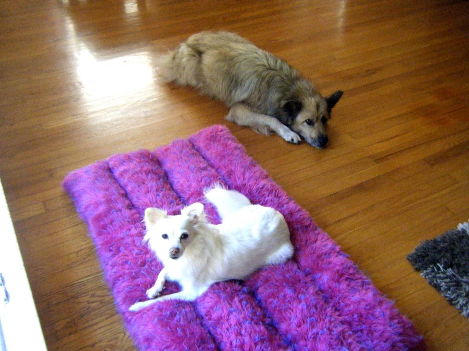 Upcycled Shag Rug Dog Bed