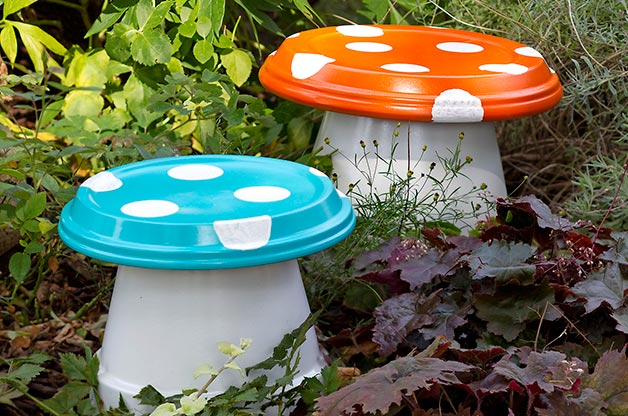Garden ­Mushrooms